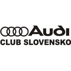 Audi logo fan